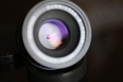 Leica Summicron-R 50 mm f/ 2.0