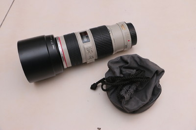 自用佳能 EF 70-200mm f/4L IS USM(小小白IS)蜂鸟最低价出