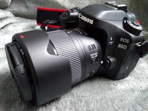 佳能 80D+镜头EF 18-135 IS USM