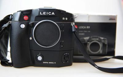 莱卡R9 DMR后背