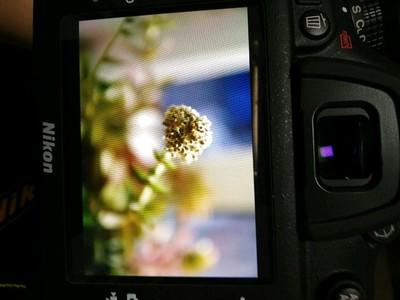 出售尼康D7200配腾龙17-50镜头