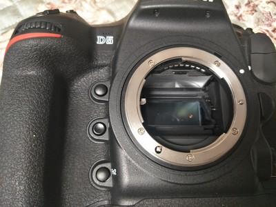 尼康 D5 XQD版本 单反相机
