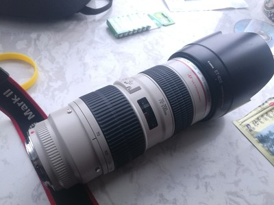 佳能 EF 70-200mm f/2.8L USM(小白)