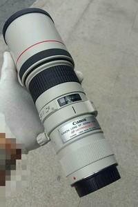 佳能 EF 400mm f/5.6 L USM长焦镜头打鸟远景利器!
