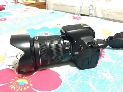 650D 大套(18-135 STM二代镜头)