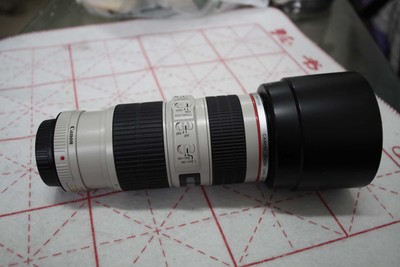 出一个佳能 EF 70-200mm f/2.8L IS USM(小白IS)爱死小小白
