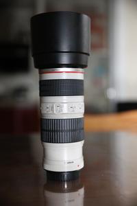 出售佳能 EF 70-200mm f/4L IS USM(小小白IS)