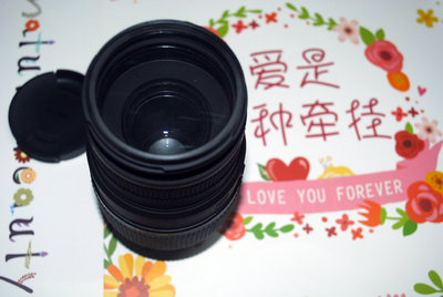 适马 70-300mm f/4-5.6 DG MACRO (尼康镜头)