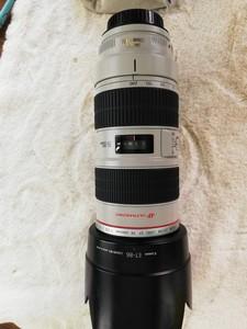 便宜出一支佳能 EF 70-200mm f/2.8L IS USM(小白IS)
