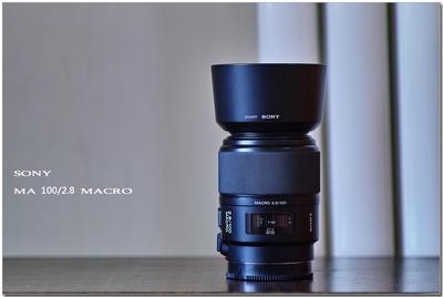 索尼 100mm f/2.8 Macro(SAL100M28)