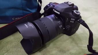 佳能(Canon)EOS 80D单反数码照相机 1