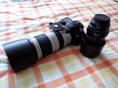 佳能 100-400mm f/4.5-5.6L IS II 大白兔