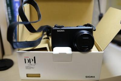 出售个人自用DP1 Merrill (DP1m)