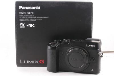 松下 DMC-GX8+12-35mm f/2.8 ASPH 套机 中文版