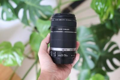 佳能 EF-S 55-250mm f/4-5.6 IS
