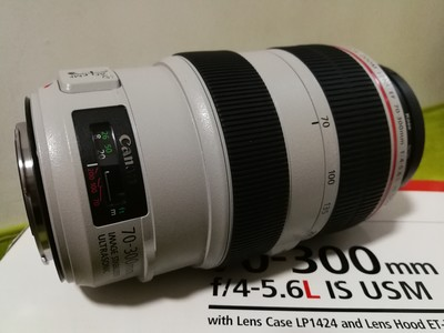 佳能 EF 70-300mm f/4-5.6L IS USM