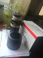 佳能 EF 100-400mm f/4-5.6L