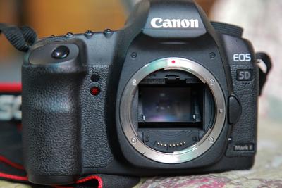 Canon/佳能EOS 5D Mark II 专业单反相机5D2 无敌兔机身 全画幅
