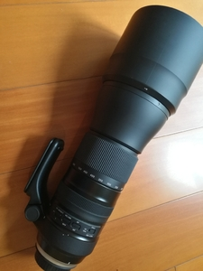 腾龙150-600 VC G2 A022 佳能口