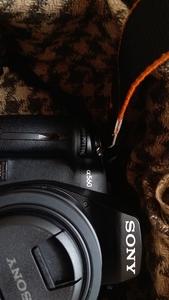 索尼 A560  附多张样片,挂5颗镜头