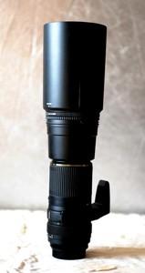 Sony卡口腾龙AF200-500 自动对焦镜