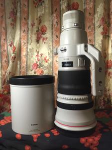 自用99新拍鸟利器佳能EF 500mm F4 L IS II USM镜头