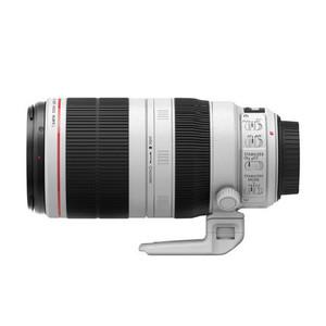 佳能 EF 100-400mm f/4.5-5.6L IS II