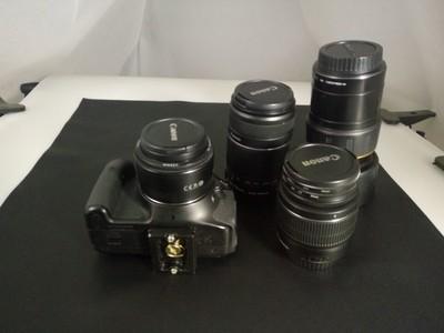 佳能 600D   腾龙90mm微距 自用装备 保存好