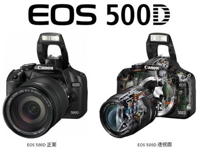 佳能500D机身+适马24-70镜头