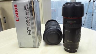 佳能 EF 100-300mm f/5.6L