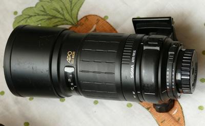 适马尼康AF口自动对焦300mm定焦微距