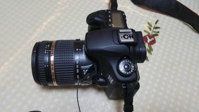 腾龙18-270 15倍光学变焦镜头 佳能卡口
