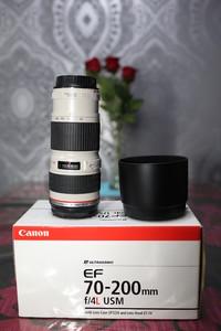 佳能 EF 70-200mm f/4L USM(小小白)