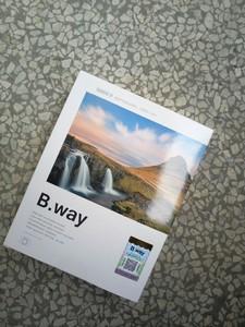 全新 B.way0.9渐变灰滤镜